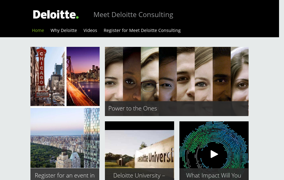 Meet Deloitte Consulting